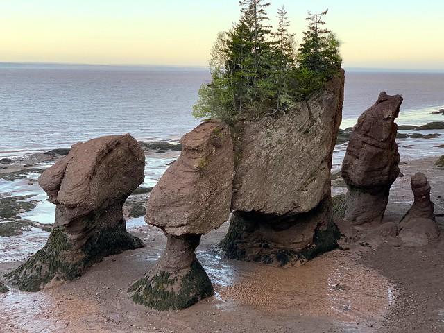 New Brunswick 142
