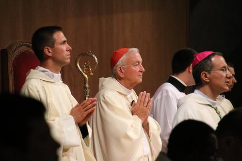 Cardinal presiding at International Mass in Lourdes (Photo: Marc Hanson)