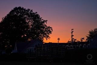 Windspiele im letzten Licht der Abendsonne