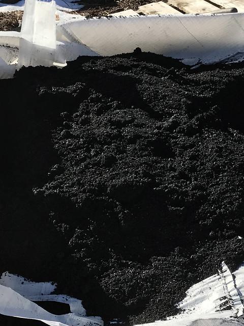Biochar pile