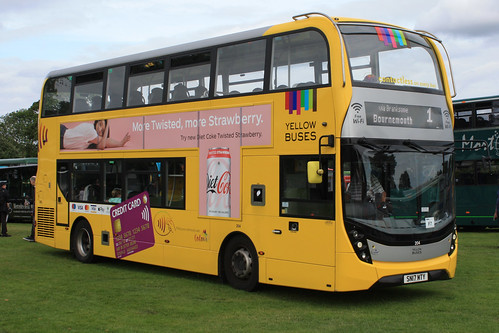 Yellow Buses 204 SN17MTY