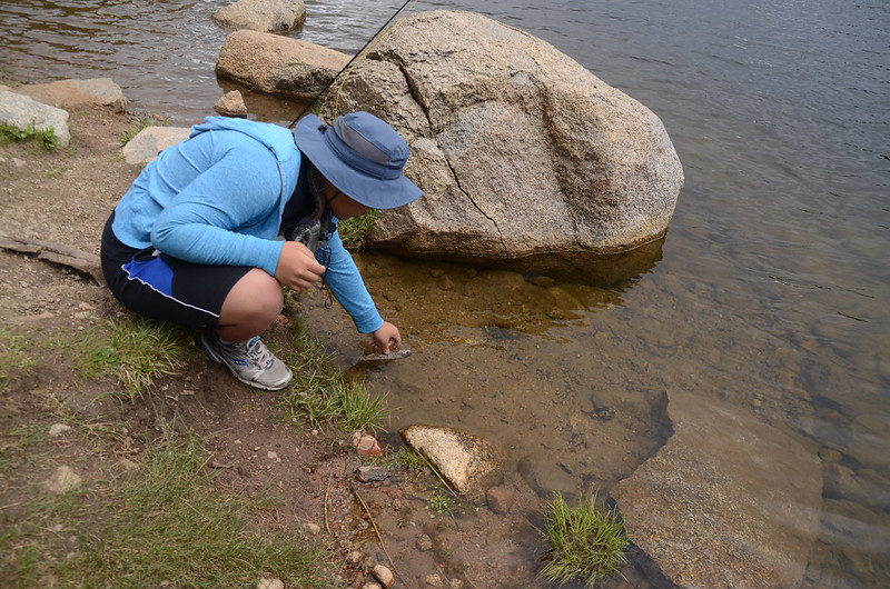 Fly fishing, Idaho Springs Reservoir  (27)
