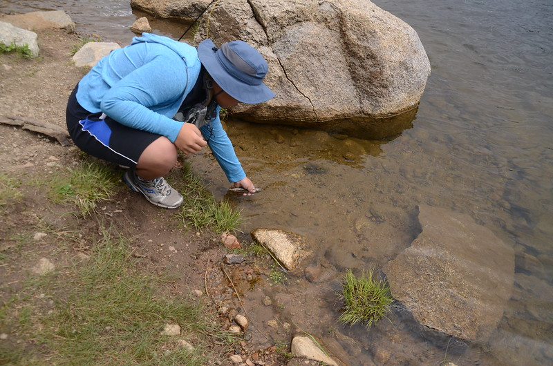 Fly fishing, Idaho Springs Reservoir  (25)