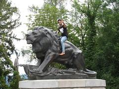 Hackher Lion