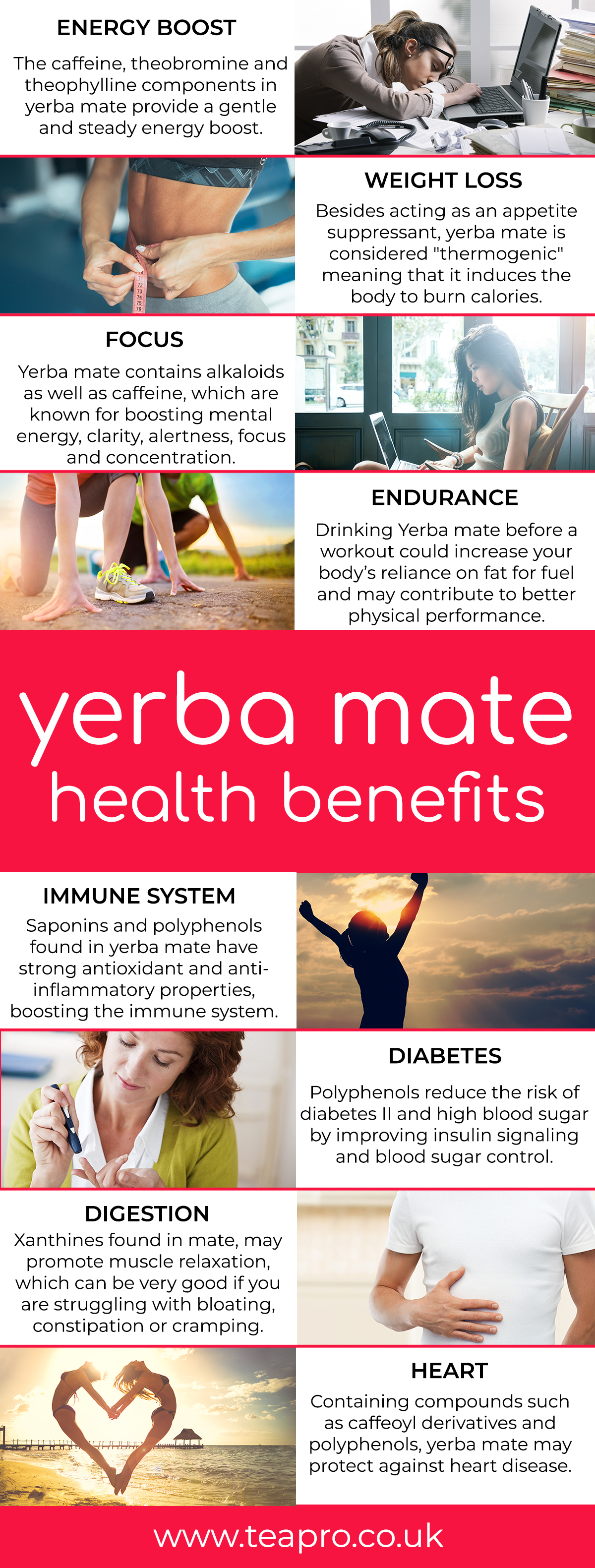 yerba-mate-health-benefits - teapro