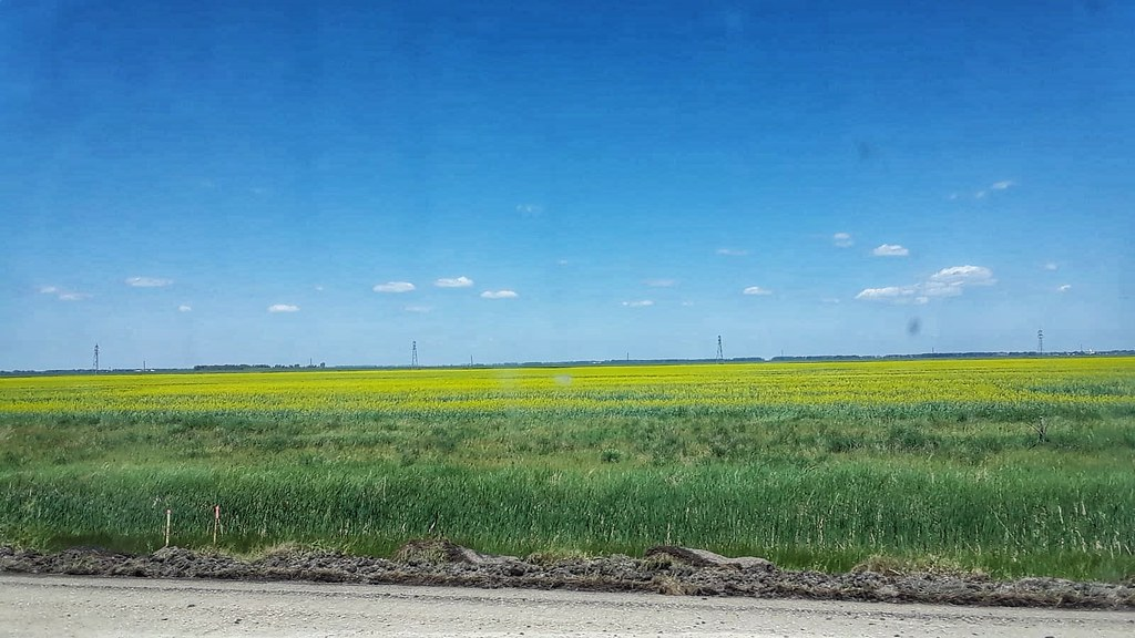 The prairies are flat as flat can be