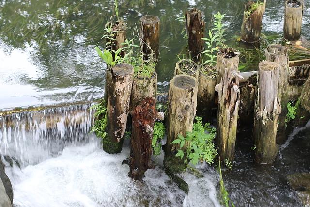 Overflow Weir