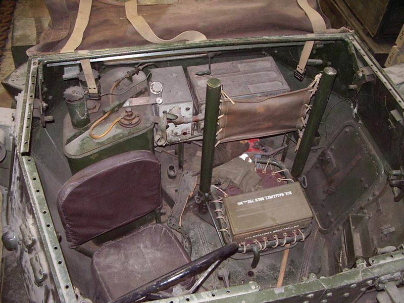 Dingo Car 3