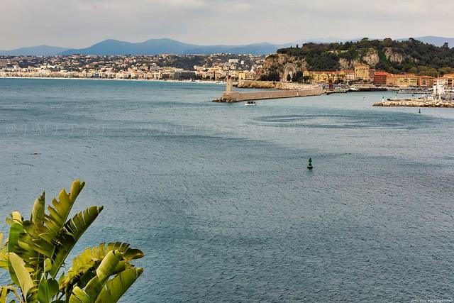 Nice - Côte d'Azur France 3D0A1946