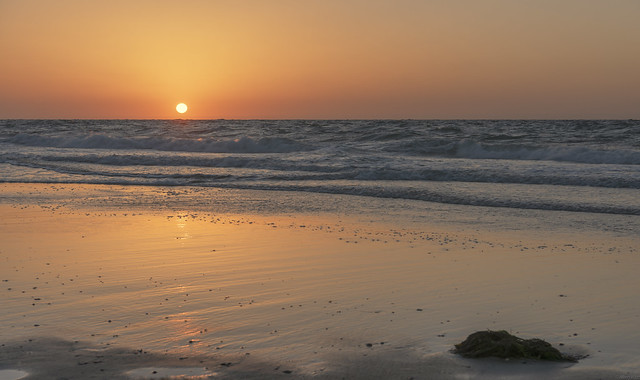 *Summer evening at the sea II*