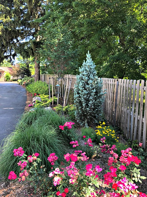 beautiful planting beds