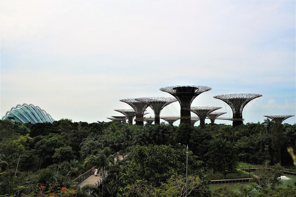 keluaran togel online singapore