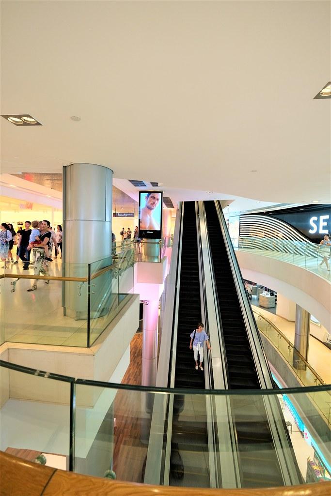 daftar togel singapor