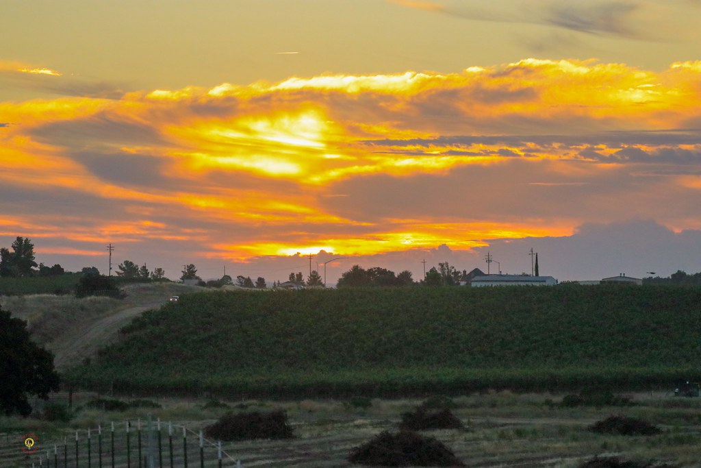 Sunrise earlier this week @pasorobleswineries @travelpaso