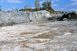 Silica Formation & top of the Dundee Limestone (Middle Devonian; Benchmark Materials-France Stone Company Sylvania Quarry, Lucas County, Ohio, USA) 3