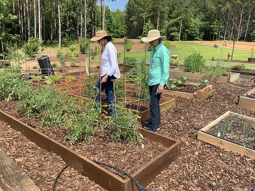 Debbie Murphy and Kerry Smith examine a garden