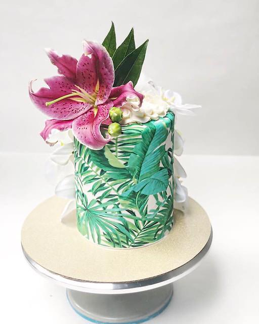 Cake by LaLa Economides
