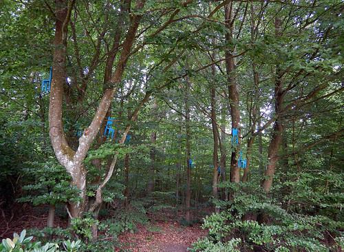 Blue chairs in trees at the Sculpture Park (KunstCentret Silkeborg Bad) in Silkeborg, Denmark