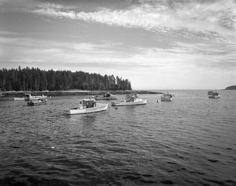 lobster boats, harbor, Spruce Head, Maine, Camera- Travelwide 90. Film- Kodak Tri-X 320. Developer- Pyrocat-MC, 7.16.19