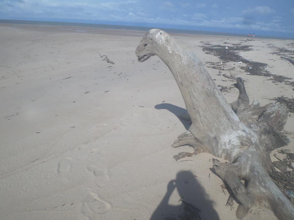 Praia do Croanan/Croanã - Ilha do Marajó.Praia deserta, linda