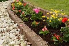 Garden-Maintenance-Cost-Collaroy-NSW