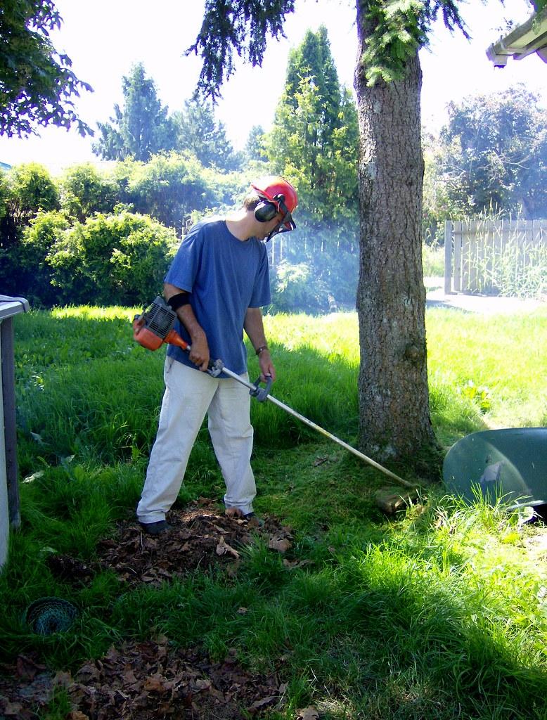 Garden-Maintenance-Collaroy-NSW