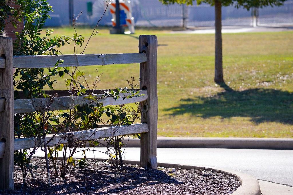 Gardening-Service-Collaroy-NSW