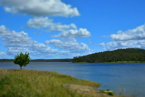 paradisedam clouds bluesky burnettriver tamronsp2470mmf28divcusd nikond7200 saturdaylandscape greengrass trees queensland australia water lonetree