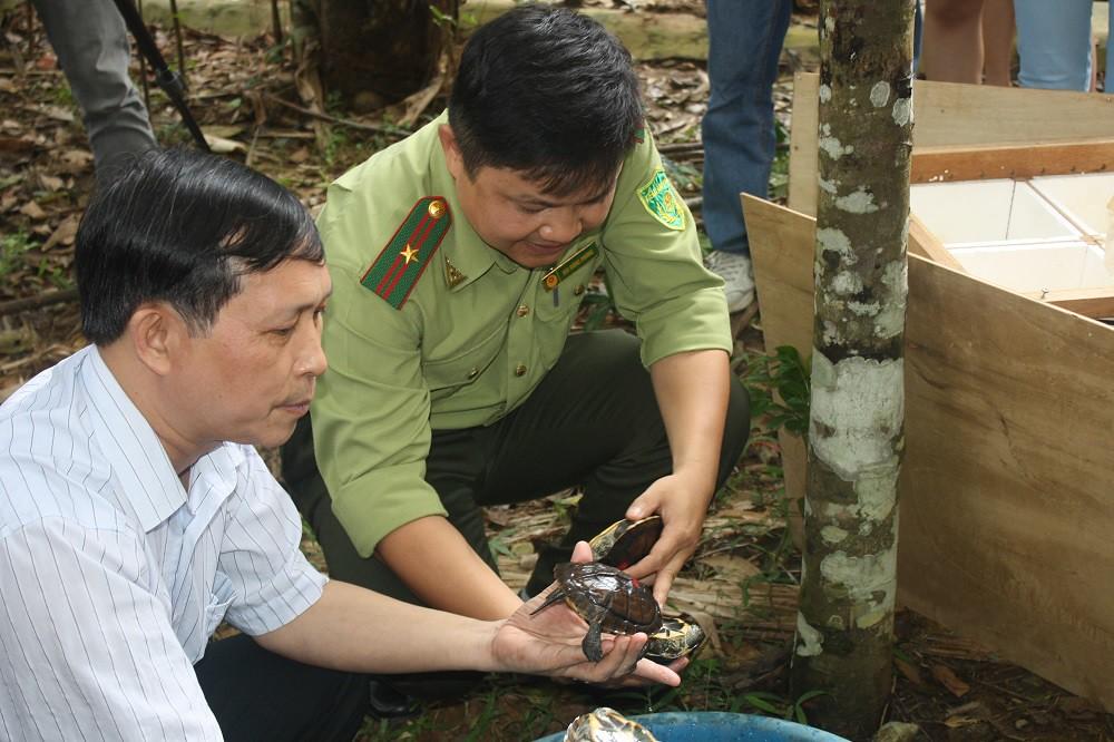 拯救非法販賣陸龜。照片來源:247新聞報網
