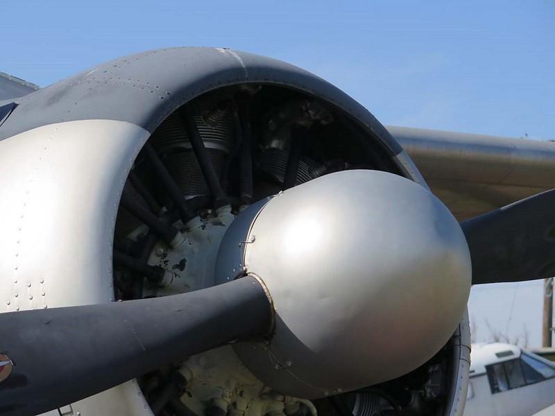 de Havilland Canadá U-6A Beaver 5