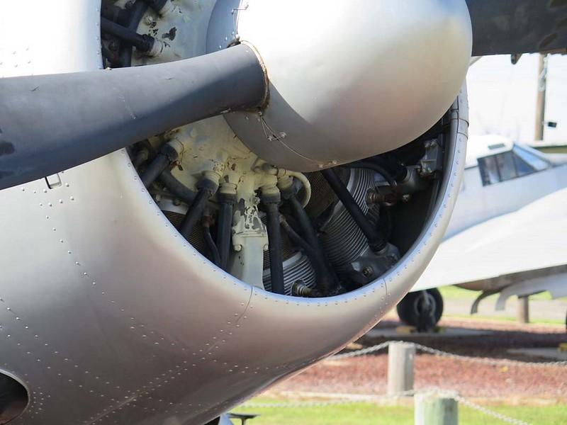 de Havilland Canadá U-6A Beaver 6