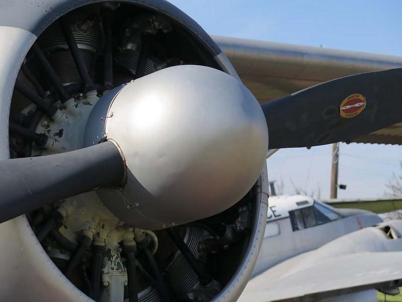 de Havilland Canadá U-6A Beaver 4