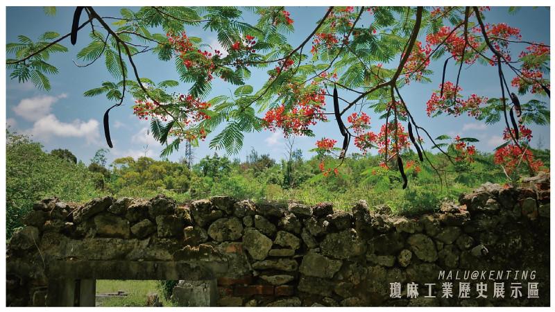 瓊麻工業歷史展示區-9