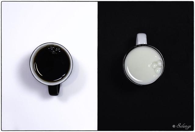 Coffee or Milk?