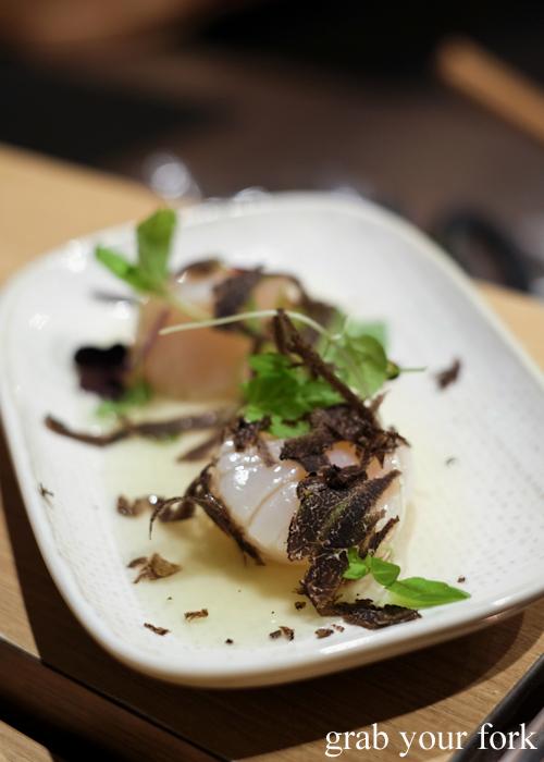 Scallop sashimi with fresh Tasmanian truffle for our omakase at Jizakana in Cammeray, Sydney