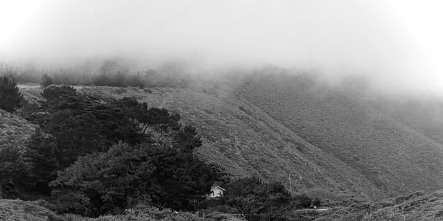 Foggy Morning _bw