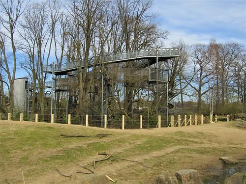 Walking between treetops in Planckendeal Zoo