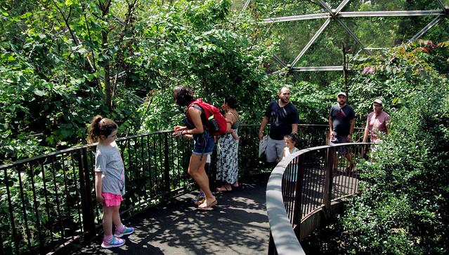 Fellow Bird Seekers.....Queens Zoo,..Aviary
