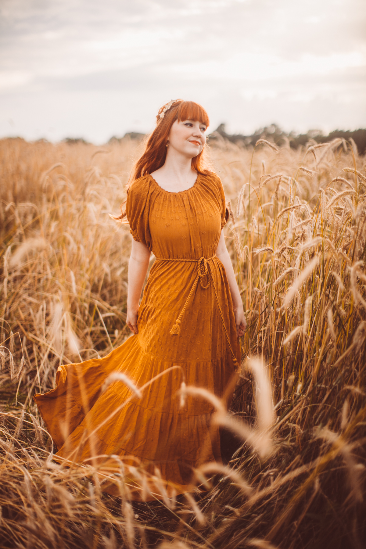 golden wheat field-26