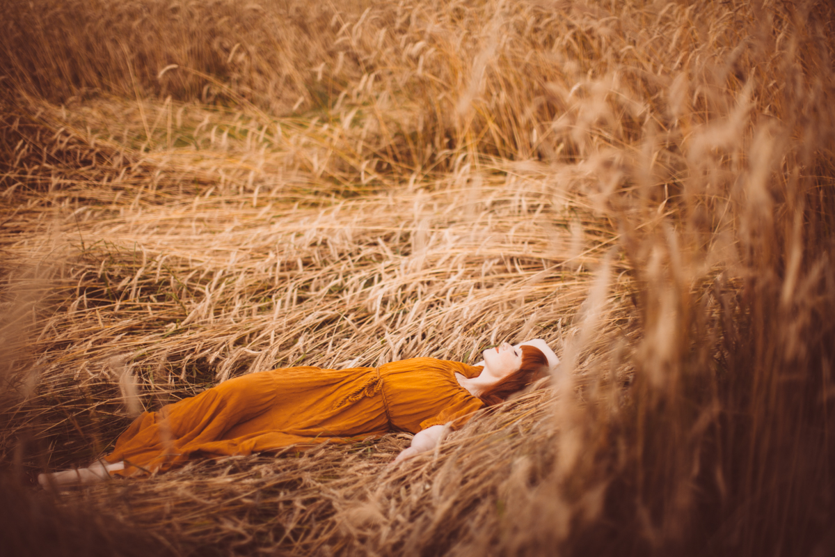 golden wheat field-81