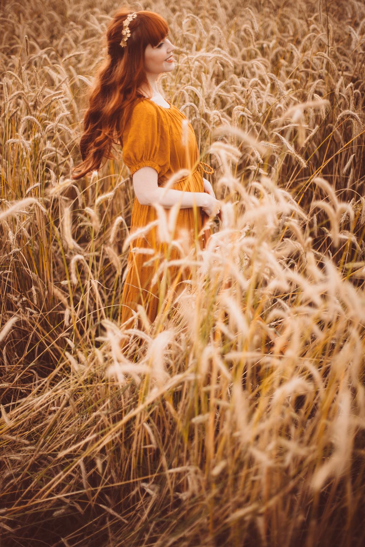 golden wheat field-40