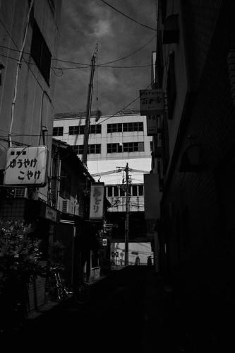 niigata monochrome 78