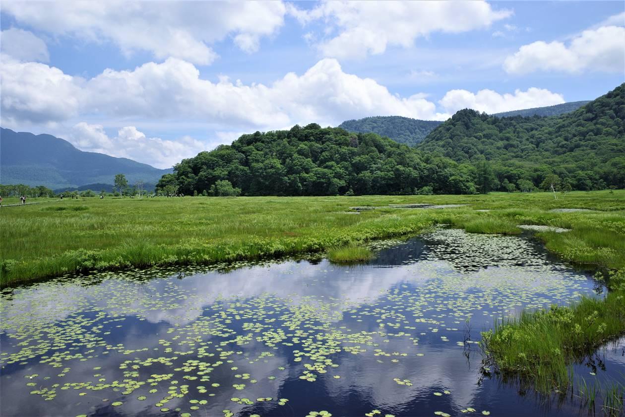 尾瀬 鏡のように空を映す池塘