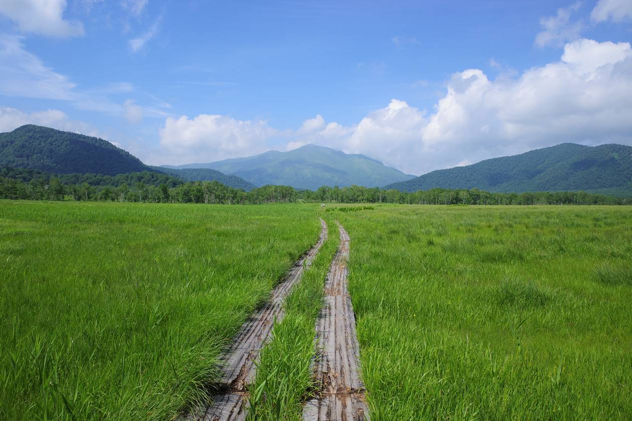 尾瀬ヶ原から眺める至仏山