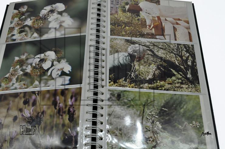 _DSC9210 Álbum com 56 fotografias a cores 15 x 10 cms