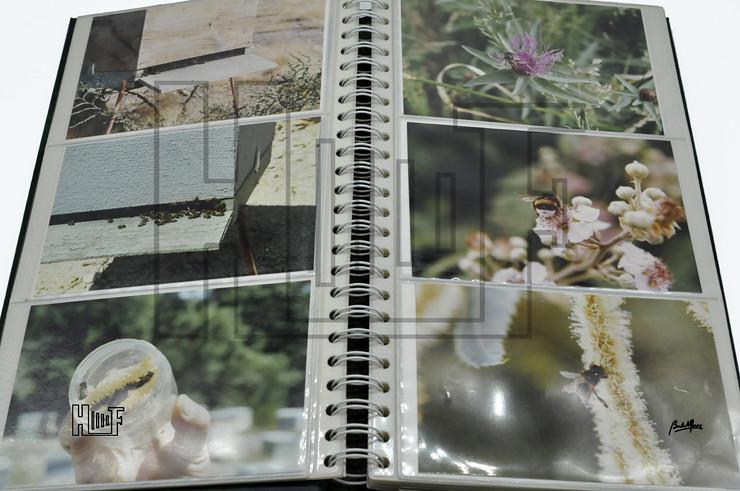 _DSC9208 Álbum com 56 fotografias a cores 15 x 10 cms