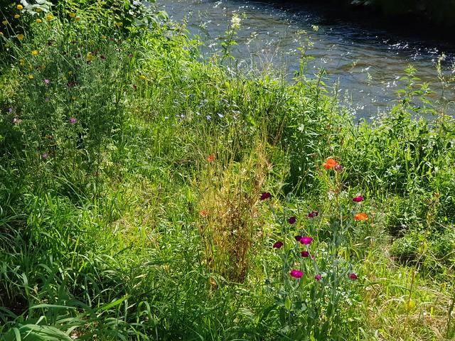 Rot -der Fluss - Red River - Rivière Rouge