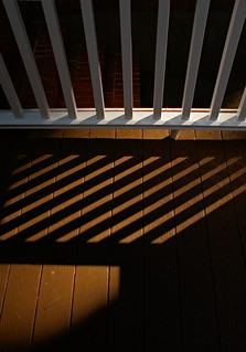 Shadows the Absence of Light