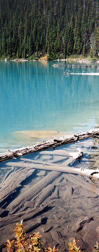 Middle Joffre Lake with submerged logs