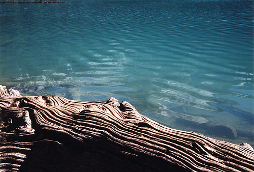 Middle Joffre Lake with weathered log